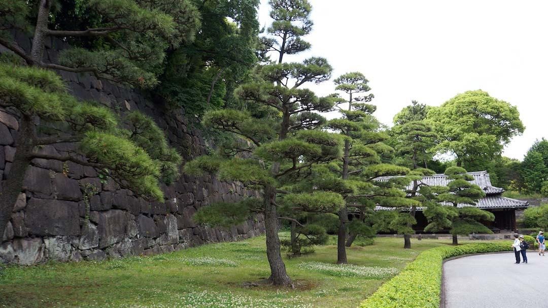 Tokio Palacio 146